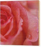 Roslyn's Rose Wood Print