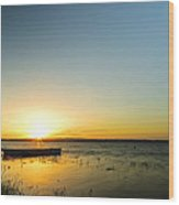 Rosslare Wood Print