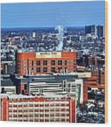 Roswell Park Winter 2013 Wood Print