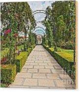 Rosy Path Wood Print