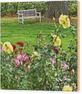 Rosy View - Beautiful Rose Garden Of The Huntington Library. Wood Print