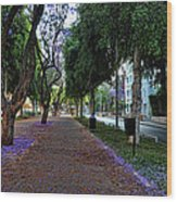 Rothschild Boulevard Wood Print by Ron Shoshani