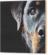 Rottie Love - Rottweiler Art By Sharon Cummings Wood Print