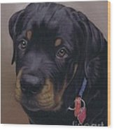 Rottweiler Dog Wood Print