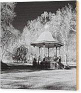 Rotunda Benalla Botanical Gardens Wood Print