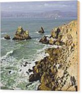 Rough Californian Shore Near San Francisco Ca Cliff House 2 Wood Print