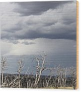 Rough Skys Over Colorado Plateau Wood Print