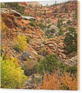 Rough Terrain In Autumn Along Zion-mount Carmel Highway In Zion Np-ut Wood Print