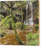 Roughting Linn Waterfall Wood Print