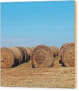 Round Bales Of Hay Wood Print