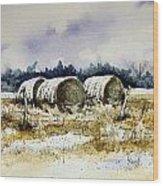 Round Bales Wood Print by Sam Sidders