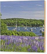 Round Pond Lupine Flowers On The Coast Of Maine Wood Print