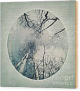 round treetops II Wood Print by Priska Wettstein