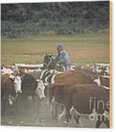 Cattle Round Up Patagonia Wood Print