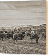 Rounding Up Cattle In Cornville Arizona Sepia Wood Print