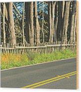 Route 1, Mendocino, California Wood Print
