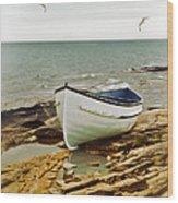 Row Boat On Rocky Shore Wood Print