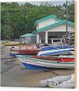 Row Boats On Beach Wood Print
