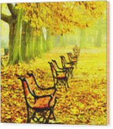 Row Of Red Benches In The Park Wood Print