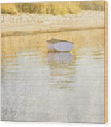Rowboat In The Summer Sun Wood Print