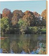 Rowing On The River Thames At Hampton Court London Wood Print