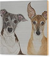 Roxie And Bruno The Greyhounds Wood Print