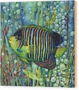 Royal Angelfish Wood Print