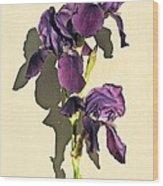 Royal Purple Iris Still Life Wood Print