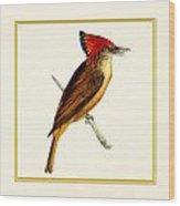 Royal Flycatcher Square Wood Print