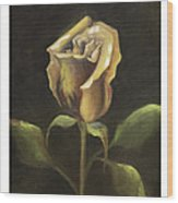 Royal Gold Bud Wood Print by Nancy Edwards
