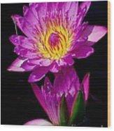 Royal Lily Wood Print