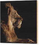 Royal Meeting In The Night Wood Print