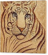 Royal Tiger Coffee Painting Wood Print