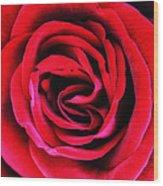 Rubellite Rose Palm Springs Wood Print