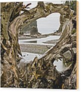 Ruby Beach Driftwood #3 Wood Print