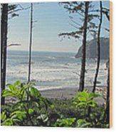 Ruby Beach I Wood Print