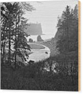 Ruby Beach In The Winter In Black And White Wood Print