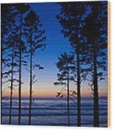 Ruby Beach Sillouette II Wood Print