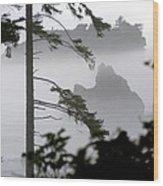 Ruby Beach Washington State Wood Print