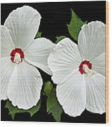 Ruby Dot Hibiscus Wood Print