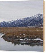 Ruby Marsh In Winter Wood Print