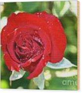 Ruby Rose Diamond Dust Wood Print
