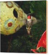 Ruby- Throated Hummingbird Wood Print