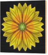 Rudbeckia Prairie Sun I Flower Mandala Wood Print