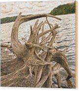Ruff Times Wood Print