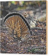 Ruffed Grouse Rear Strut Wood Print
