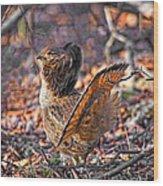 Ruffed Grouse Side Strut Wood Print