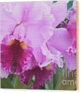 Ruffled Orchids Wood Print