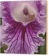 Ruffly Purple Orchid Closeup Wood Print