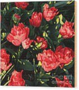 Ruffly Red Tulips Square Wood Print